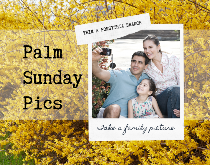 Help Us Celebrate Palm Sunday By Sharing Your Pics